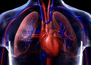 Las medias compresivas de la trombosis
